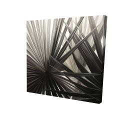 Canvas 24 x 24 - 3D - Sepia tropical plants