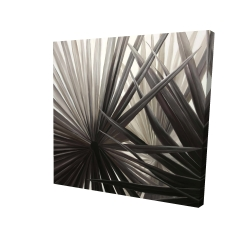 Canvas 24 x 24 - 3D - Grayscale tropical plants