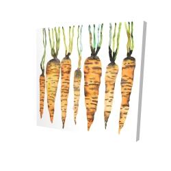Canvas 24 x 24 - 3D - Watercolor carrots