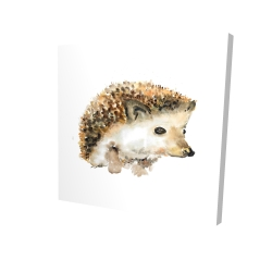 Canvas 24 x 24 - 3D - Watercolor hedgehog