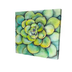 Canvas 24 x 24 - 3D - Watercolor succulent plant