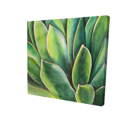 Canvas 24 x 24 - 3D - Watercolor agave plant