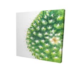 Canvas 24 x 24 - 3D - Watercolor mini cactus