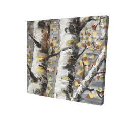 Canvas 24 x 24 - 3D - Budding white birches 1