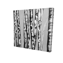 Canvas 24 x 24 - 3D - Birches intersecting