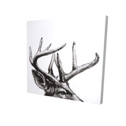 Canvas 24 x 24 - 3D - Roe deer plume