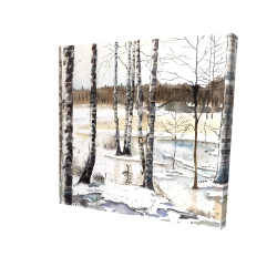 Canvas 24 x 24 - 3D - Winter swamp
