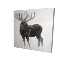 Canvas 24 x 24 - 3D - Bull moose