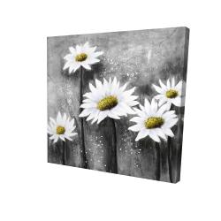 Canvas 24 x 24 - 3D - Daisies