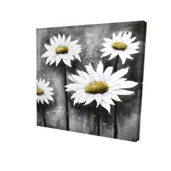Canvas 24 x 24 - 3D - Daisies at sun