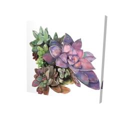 Canvas 24 x 24 - 3D - Succulent plant