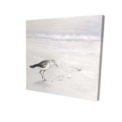 Canvas 24 x 24 - 3D - Semipalmated sandpiper