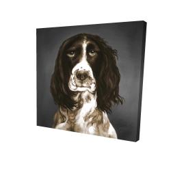 Canvas 24 x 24 - 3D - Brown english springer spaniel