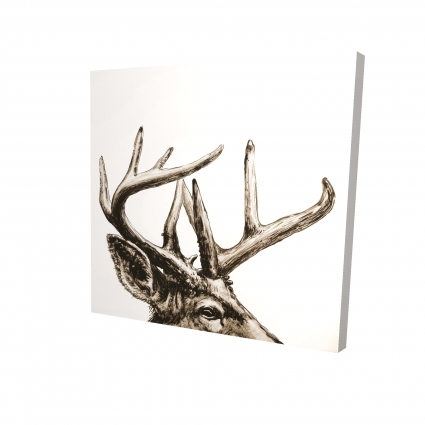 Roe deer plume sepia