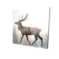 Canvas 24 x 24 - 3D - Large plume roe deer