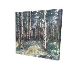 Canvas 24 x 24 - 3D - Birches