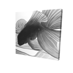 Canvas 24 x 24 - 3D - Monochrome two betta