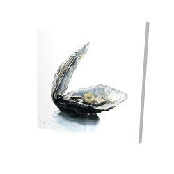 Canvas 24 x 24 - 3D - Pearl oyster