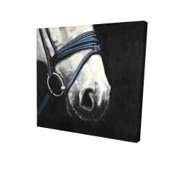 Canvas 24 x 24 - 3D - Horse with harness