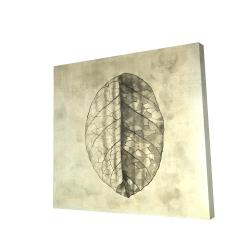 Canvas 24 x 24 - 3D - Translucent