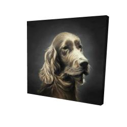 Canvas 24 x 24 - 3D - Field spaniel