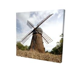 Canvas 24 x 24 - 3D - Windmill