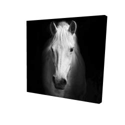 Canvas 24 x 24 - 3D - Monochrome horse