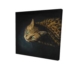 Canvas 24 x 24 - 3D - Bengal cat