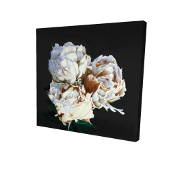 Canvas 24 x 24 - 3D - Blooming peonies