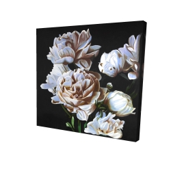Canvas 24 x 24 - 3D - Peonies