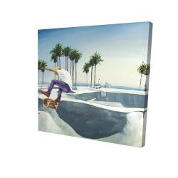 Canvas 24 x 24 - 3D - Skate park california