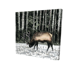 Canvas 24 x 24 - 3D - Caribou in the forest