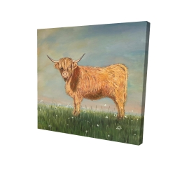 Canvas 24 x 24 - 3D - Daisy the highland cow