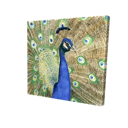 Canvas 24 x 24 - 3D - Peacock