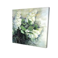 Canvas 24 x 24 - 3D - White lilacs