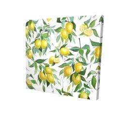 Canvas 24 x 24 - 3D - Lemon pattern