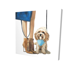 Canvas 24 x 24 - 3D - Fashionable cavoodle dog
