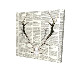 Canvas 24 x 24 - 3D - Deer horns on newspaper