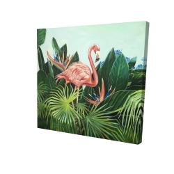 Canvas 24 x 24 - 3D - Tropical flamingo