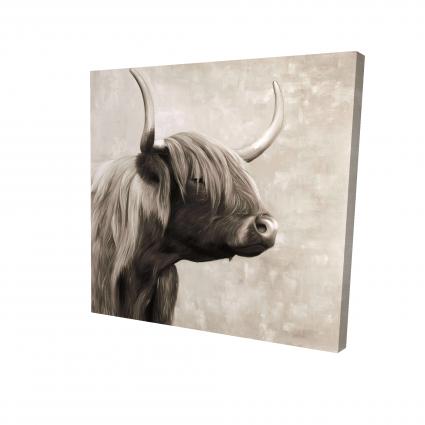 Beautiful highland cattle sepia