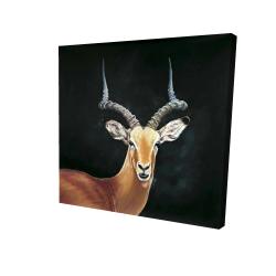 Canvas 24 x 24 - 3D - Antelope