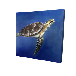 Canvas 24 x 24 - 3D - Turtle in the ocean