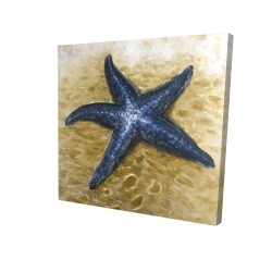 Canvas 24 x 24 - 3D - Beautiful starfish