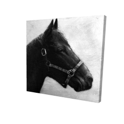 Canvas 24 x 24 - 3D - Gallopin the horse