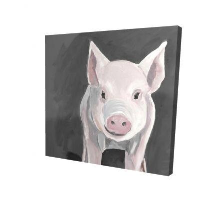 Little piglet