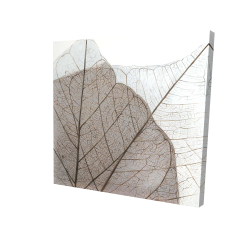 Canvas 24 x 24 - 3D - Translucent dried leaves