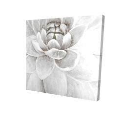 Canvas 24 x 24 - 3D - Delicate white chrysanthemum