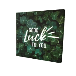 Canvas 24 x 24 - 3D - Good luck to you