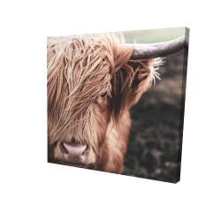 Canvas 24 x 24 - 3D - Desaturated highland cow