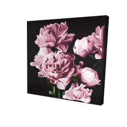 Canvas 24 x 24 - 3D - Pink peonies